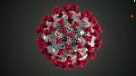 Coronavirus111