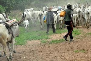 A photo of some Nigerian herdsmen