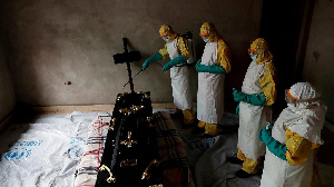 The Ebola virus causes a fever and often leads to massive internal bleeding and fatalities