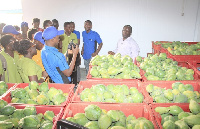 The AgriTech members on a tour of some horticultural processing sites