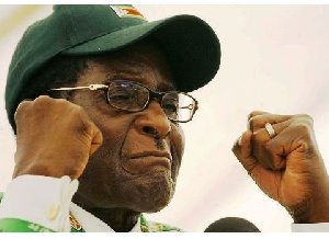 Pro African writers expressed mixed feelings about how Mugabe rose as a hero and fell as a villain