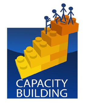 Capacity Ict