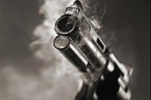 Gun (1).png