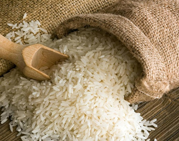 CSIR-Scientists introduce three improved rice varieties to farmers