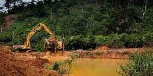 Excavator destroying the forest for mining