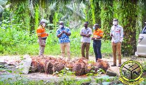 He inspected a vast oil palm farm at Bogoso