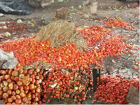 Postharvest losses remain a major concern for farmers