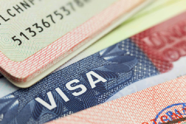 Election 2020: Embassies urged to deny politicians visas till after elections