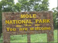 The Mole wildlife officer was found dead with gunshot injuries