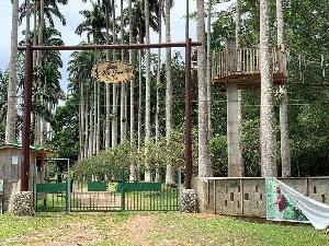 Bunso Arboretum