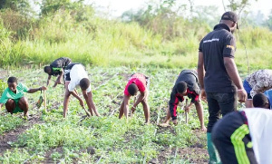 The report showed ony 37 percent of youth in agriculture had access to finance