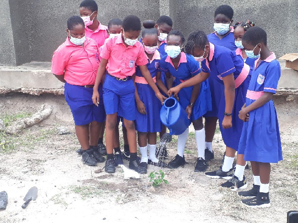 Deks Educational Institute plant trees to mark Day of the African Child