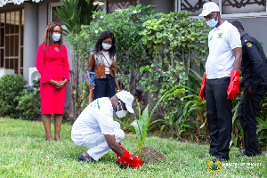 Ken Ofori-Atta, the Minister for Finance planting a tree