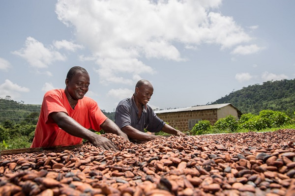 COCOBOD signs US$1.3 billion loan to purchase cocoa beans next season