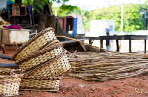 Access to raw materials has been a challenge to basket weavers
