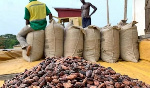 Cocoa: Highest production in history attained with over 1 million tonnes achieved