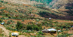 Four things you must know about 'warzone' Tigray and its people