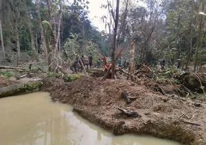 Atewa Range Forest
