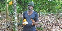 Opanyin Mensah is a 42-year-old farmer based in Adansi Akrofuom in the Ashanti Region