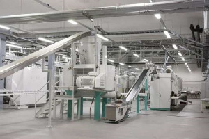 Set-Up Industry, a rubber sack producing industry