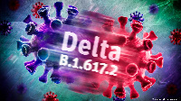 The WHO has classified the Delta variant as a