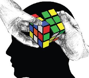 Cognitive Brain Processes