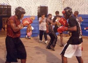 File photo - Boxers training