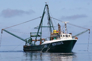 Fishing trawlers have been engaging in a lot of illegality on the seas (File Photo)