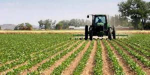 Modern Farming 78.jpeg