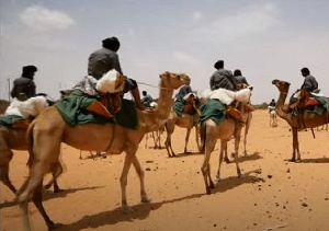 Meet the camel soldiers of Mauritania
