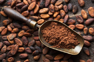 Stakeholders asked not to fret about the news of China exporting Cocoa to Belgium