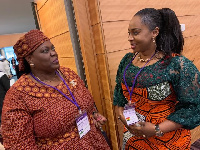 Adwoa Safo says the Affirmative Action Bill will bring about gender parity