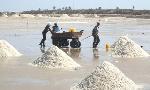 PIAC backs using local salt to feed oil industry