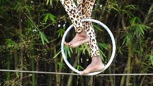 Gabon Circus