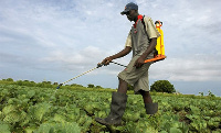 Fairtrade International works to secure a better deal for farmers and workers