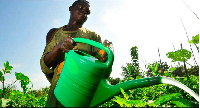 Farmers have expressed interest in acquiring the fertilizer for the upcoming farming season