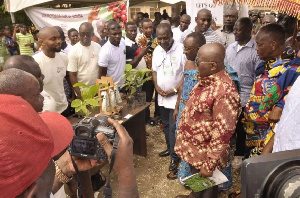 The program is designed to focus on the development of selected export tree crops