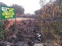 File photo: Achimota forest destroyed by fire
