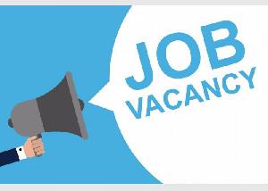 Job Vacancy Hiring