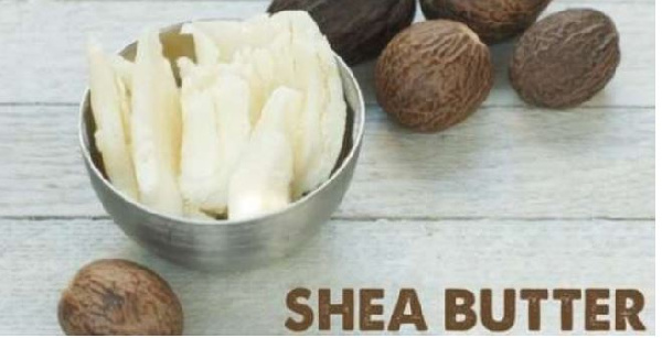 Stakeholders appeal for establishment of Shea Board Authority