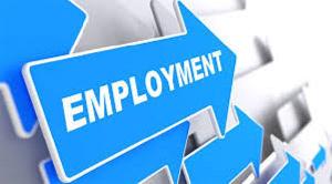 Employment 5.jfif
