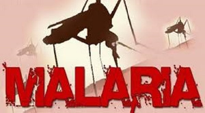 Malaria remains a major cause of death and hospital admissions in parts of Africa