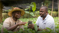 Cargill has been working with farmers to sustain the cocoa sector