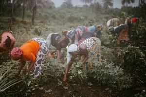 Farmers Women4.png