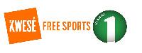 Kwesé Free Sports and Viasat 1