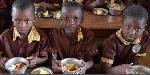 School feeding programme - File photo