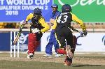 Cricket. File photo