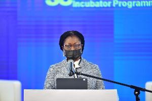 Mrs Elsie Addo Awadzi12121.jpeg