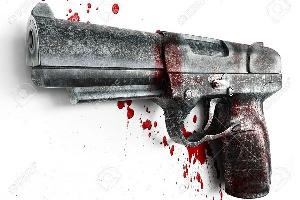Gun1 600x400