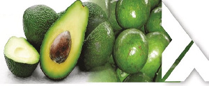 Kenya is one of the top producers of avocado
